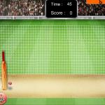 net cricket