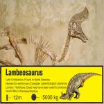 jurassic-fossil